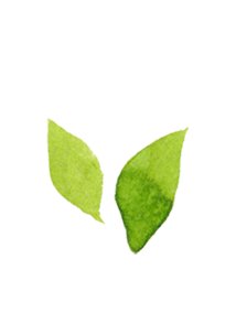奈良広陵 S様邸|自然素材の戸建て耐震リフォームなら丹陽社