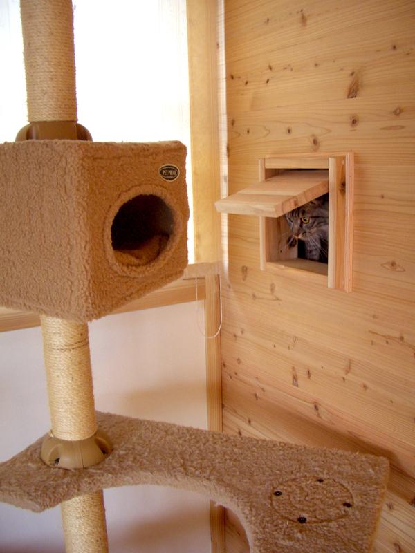 富田林寺池台 I様邸 猫ちゃんの出入り口