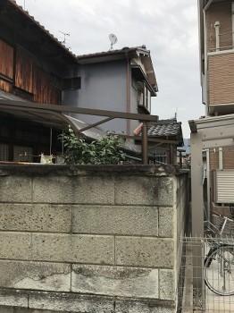 八尾弓削 T様邸 自然素材リフォーム before 外観。