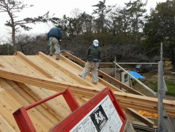 【建て方】服部緑地「板倉造り」事務所棟移築 屋根下地02