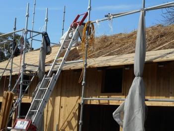 【屋根~外壁】服部緑地「板倉造り」事務所棟移築 屋根断熱材02
